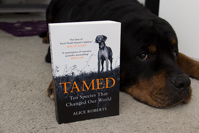 Tamed by Alice Roberts. Book photographed near my dog.