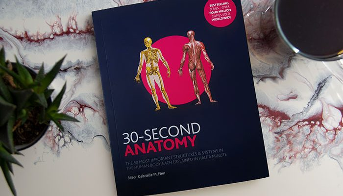 30-Second Anatomy by Gabrielle Finn
