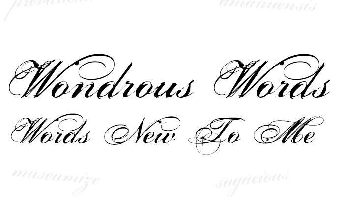 Wondrous Words. Words New To Me #1